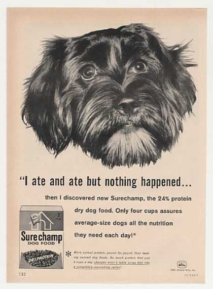 Black Dog Ate Nothing Happened Surechamp Food (1960)