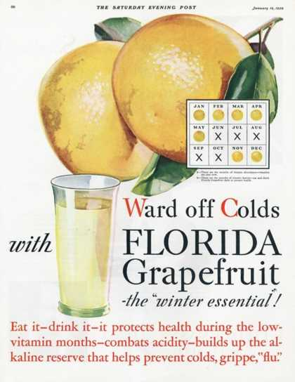 Florida Grapefruit, Colds Flu Fruit, USA (1920)