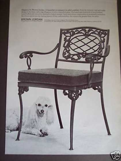 White Poodle Photo Brown Jordan Chair Decor (1976)