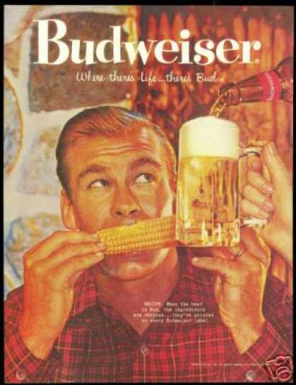 Budweiser Bud Beer Corn Cob Photo Vintage (1960)
