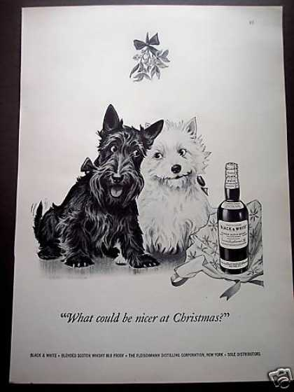 Dennis Dog Art Mistletoe Black & White Scotch (1950)