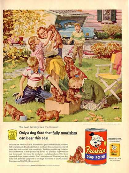 Cocker Spaniel Puppies Children Friskies Dog (1955)