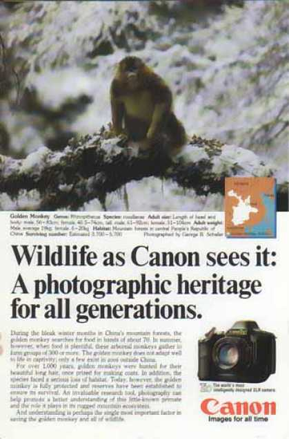 Canon T90 SLR Camera – Golden Monkey (1986)