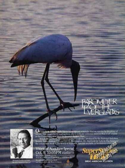 "Wood Stork ""Barometer of the Everglades"" (1987)"