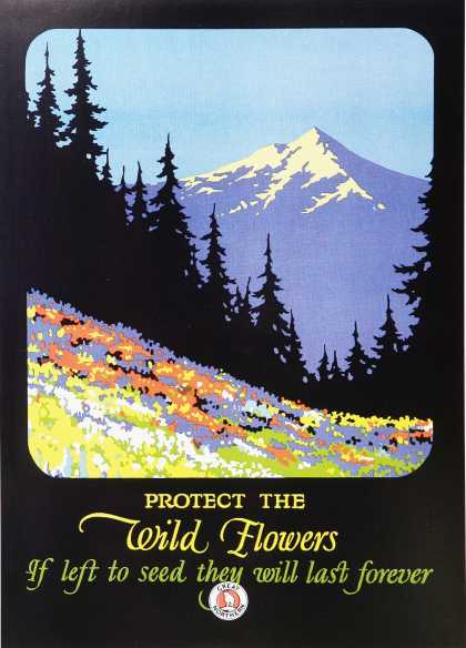 Protect Wild Flowers