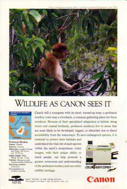 Canon Color Laser Copier – Proboscis Monkey (1991)