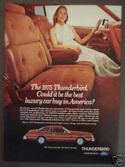 Ford Thunderbird for 1975 Leather Car Photo (1974)
