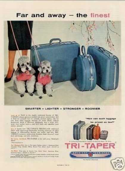 American Tourister Tri-taper Luggage Ad Poodles (1957)