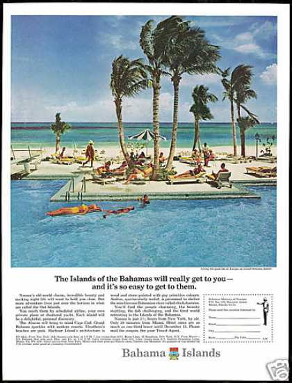 Grand Bahamas Island Lucaya Travel Photo (1966)