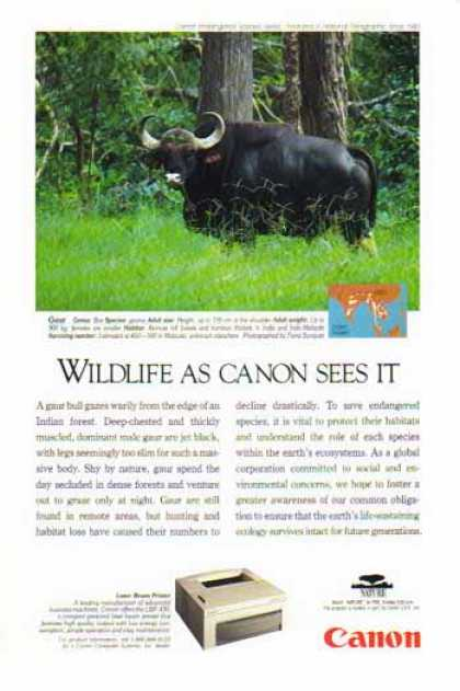 Canon LBP-430 Laser Beam Printer – Gaur Bull (1993)
