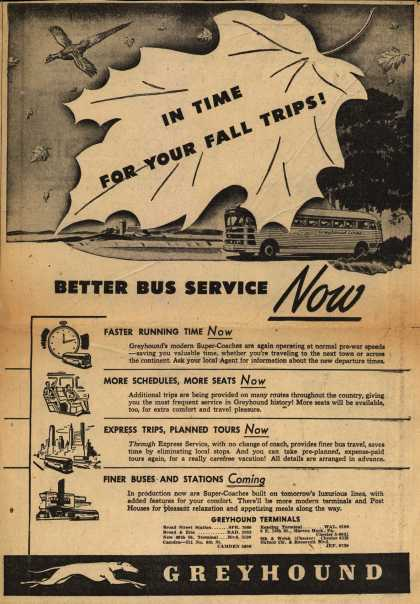 Greyhound – In Time For Your Fall Trips! Better Bus Service Now (1945)
