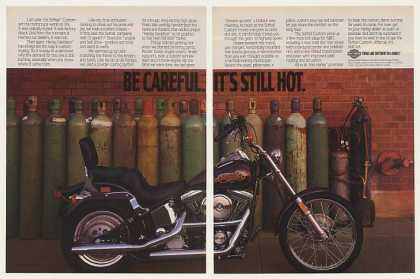 Harley-Davidson Softail Custom Motorcycle (1987)