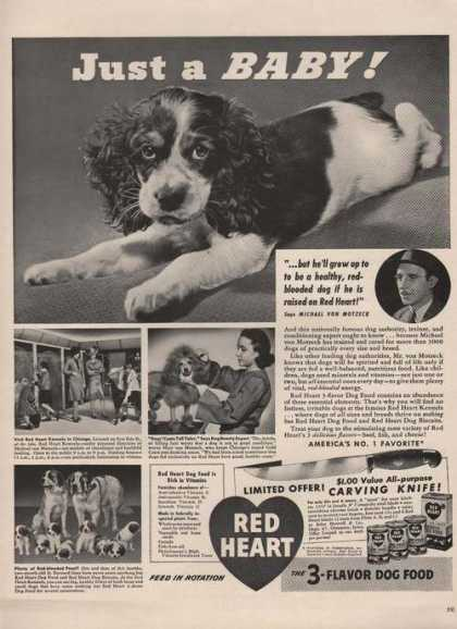 Red Heart 3 Flavor Dog Food (1941)