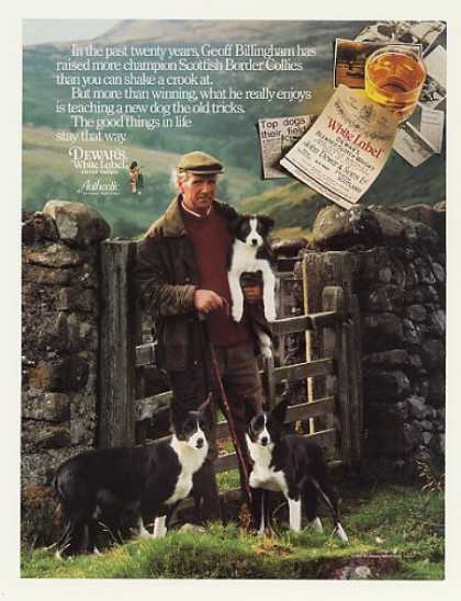 '88 Geoff Billingham Scottish Border Collies Dewar's (1988)