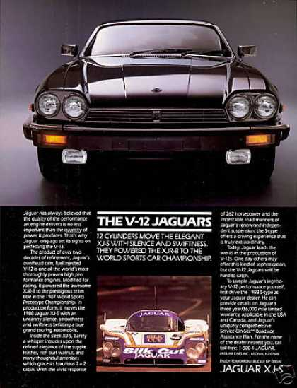 Jaguar XJS V-12 Car & XJR-8 Race Car Photo (1988)