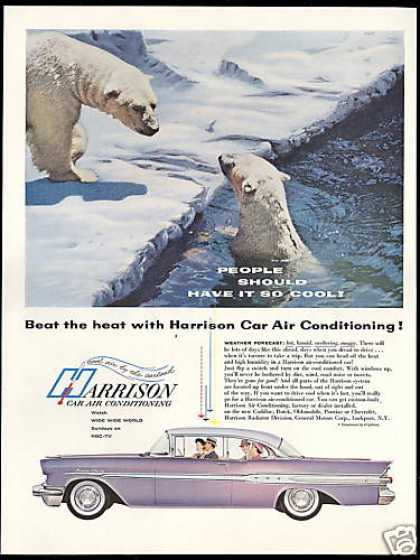Pontiac Super Chief Car Harrison Air Polar Bear (1957)