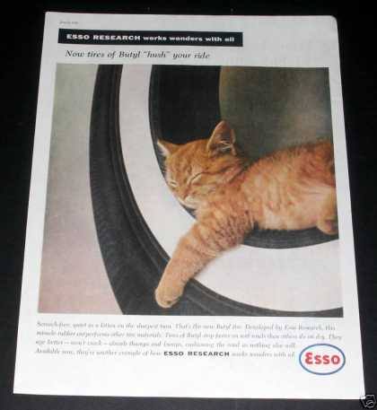 Esso Research, Butyl Tires, Kitty (1959)
