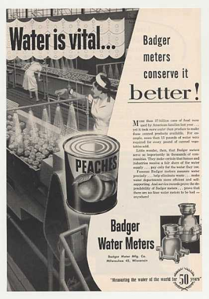 Badger Water Meters Vital Canned Peaches (1955)