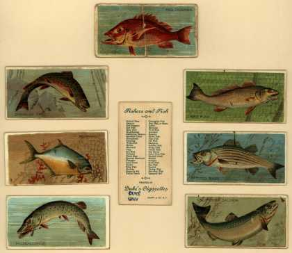 W. Duke Sons & Co.'s Duke's Cigarettes – Fishers and Fish – Image 1
