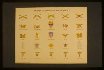 Insignia of branch or arm of service. (1941)