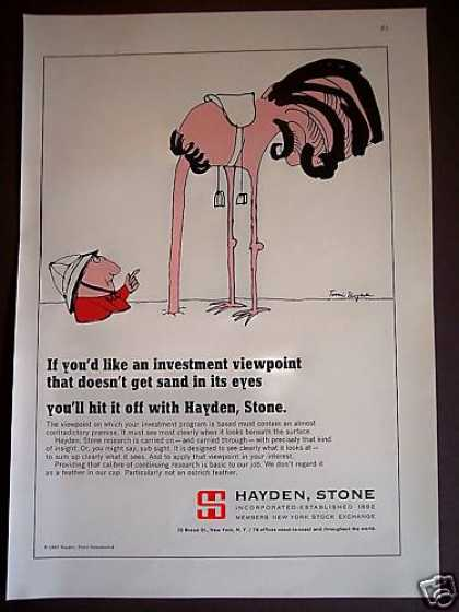 Ostrich Head In Sand Hayden Stone Investments (1967)