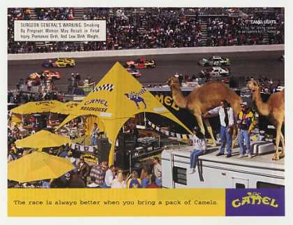 Race is Better When You Bring a Pack of Camels (1997)