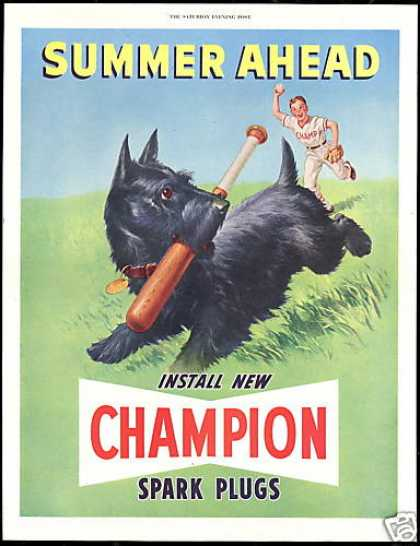 Scottish Terrier Dog Baseball Champion Plugs (1950)