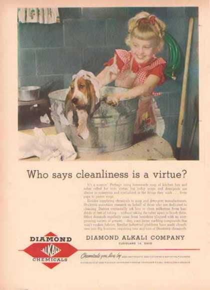 Diamond Chemicals Ad- Bassett Hound- Cleanliness a Virtue – Sold (1951)