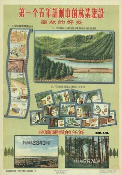 Forestry work in the First Five Year Plan (1956)