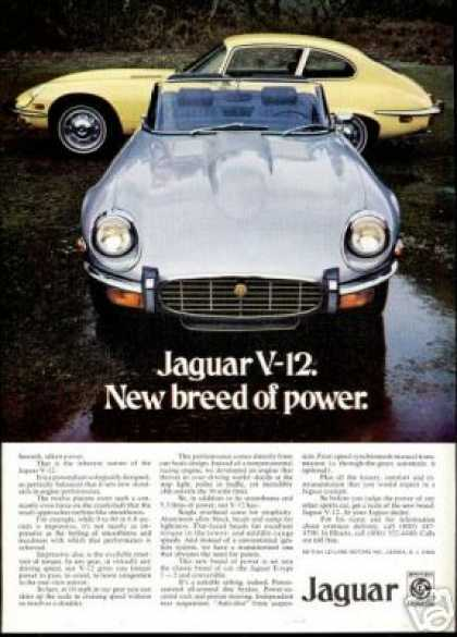 Jaguar V-12 E-Type Convertible & 2+2 Photo Car (1973)