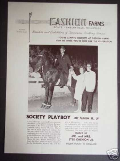 Walking Horse Champion Photo Cashion Farms (1965)