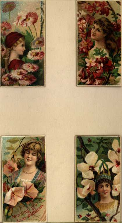 W. Duke Sons & Co.'s Duke's Cigarettes – Floral Beauties – Image 3