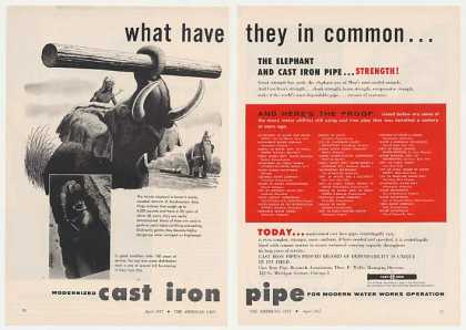 Asia Elephant Great Strength Cast Iron Pipe 2-P (1955)