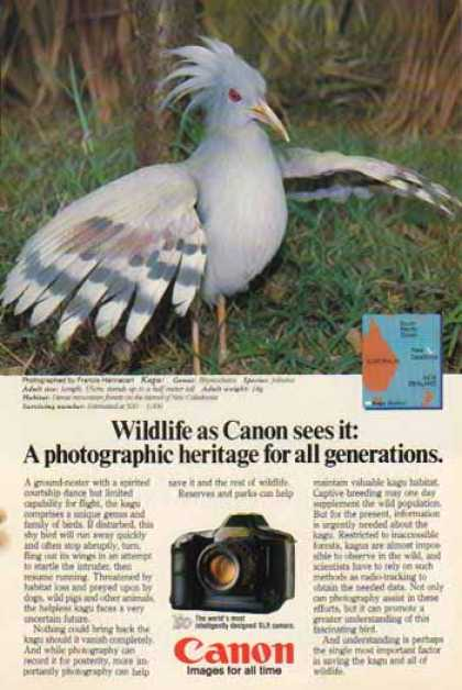 Canon T90 SLR Camera – Kagu Bird (1986)
