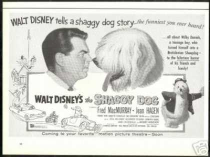 Disney The Shaggy Dog Fred MacMurray Movie (1959)