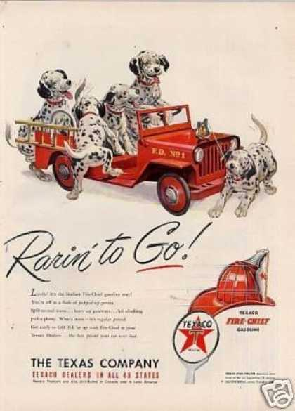 Texaco Ad &quot;Rarin&#8217; To Go&quot; Dalmatians (1950)