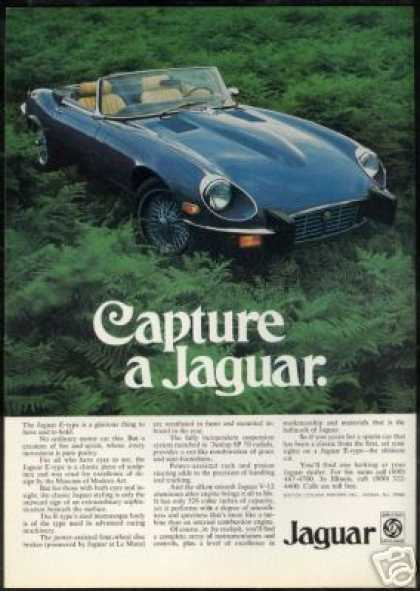 Jaguar E-Type Convertible Photo Vintage (1974)