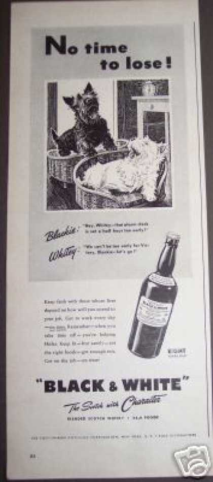 Black & White Scotch Scotty Dogs for Victory (1943)