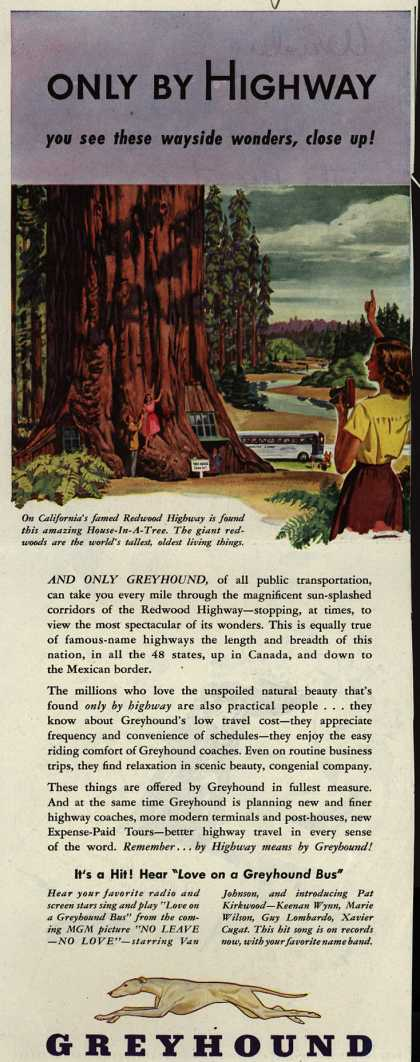 Greyhound – Only By Highway you see these wayside wonders, close up (1946)