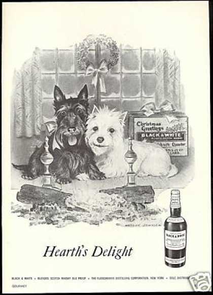 Scottish Terrier Westie Christmas B&W Scotch (1957)