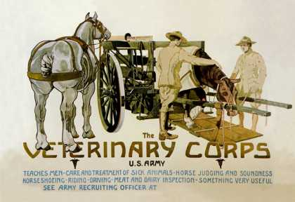 Veterinary Corps. U.S. Army