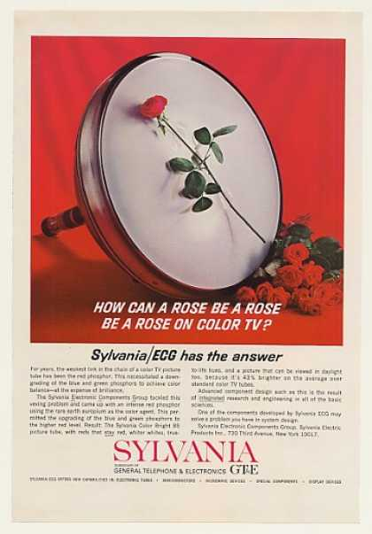 Sylvania Color Bright 85 TV Picture Tube Rose (1964)