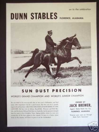 Show Horse Dunn Stable Sun Dust Precision Photo (1965)