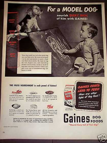 Baby Artist Dog Model Gaines Dog Food (1949)