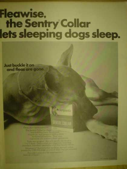 Sentry Collar. Lets sleeping dogs sleep (1967)