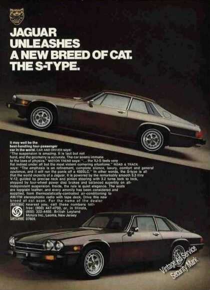 Jaguar Unleashes a New Breed of Cat the S-type (1976)