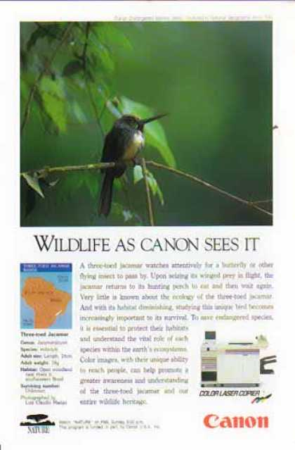 Canon Color Laser Copier – Three-Toed Jacamar Bird (1991)