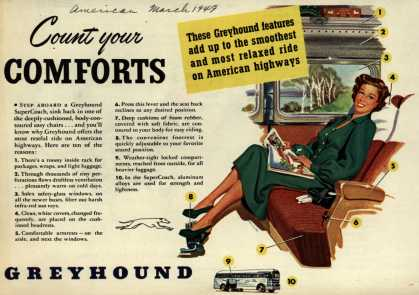 Greyhound – Count your Comforts (1949)