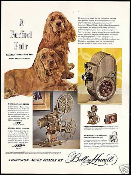 Cute Cocker Spaniel Dog Bell & Howell Camera (1949)