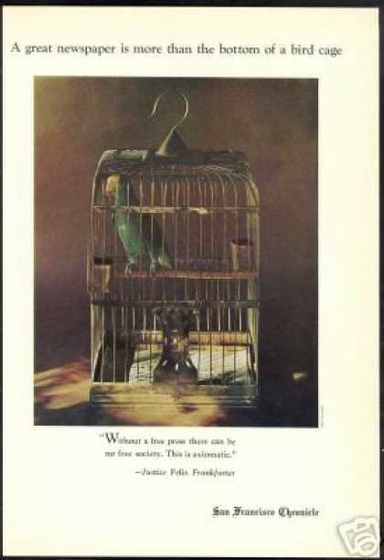 Parrot Bird Cage San Francisco Chronicle (1971)